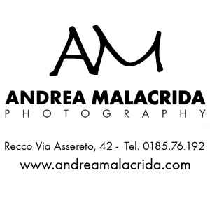 Andrea Malacrida Andrea Malacrida | wedding photography